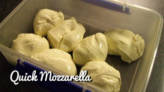 quick mozzarella video tutorial