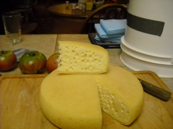 Swiss cheese long shot